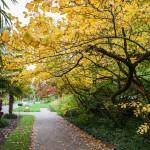 BotanicalGardensbyRachelJones-4123
