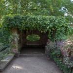 BotanicalGardensbyRachelJones-4223